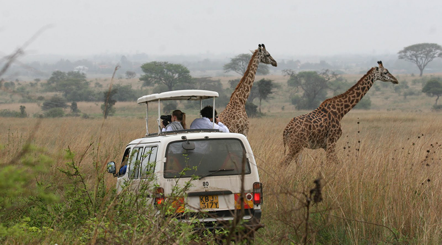 Nairobi City Excursions